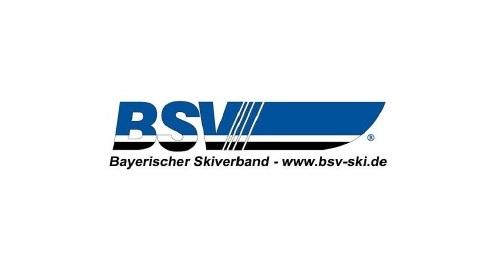 BSV Logo Hompage